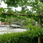 petit jardi clos à Concarneau