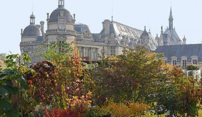 Journées des Plantes - 14, 15 et 16 octobre 2016 © Jean-Pierre Delagarde