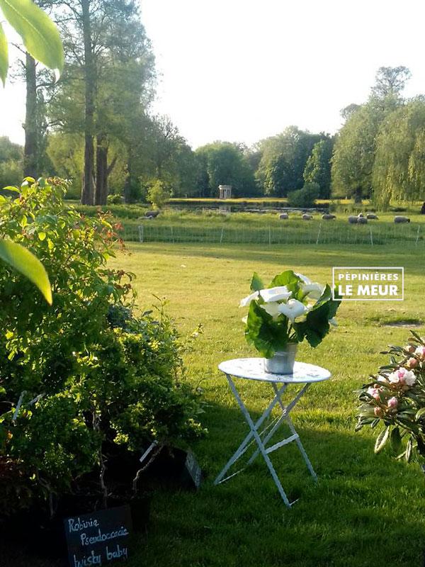 Pépinières Le Meur Chantilly printemps 2019