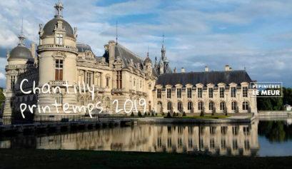 Chantilly Pépinières Le Meur printemps 2019